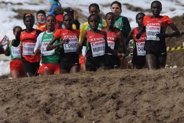 leading-athletes-2015-world-cross-country