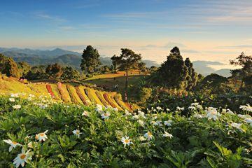 inaugural-world-mountain-trail-championships-chiang-mai