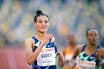 ratified-world-record-gidey-hassan-hodgkinson-holloway-warholm