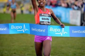 dibaba-dashes-defars-hopes-with-speedy-finish