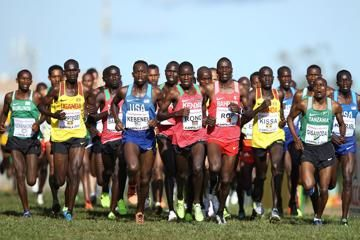 world-cross-country-aarhus-2019-entry-lists