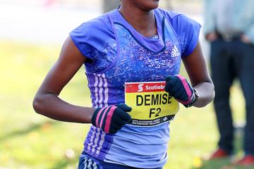 toronto-waterfront-marathon-2015-demise-chemt