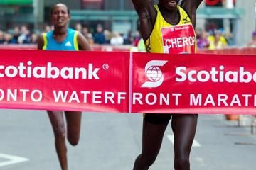 cherop-returns-to-scotiabank-toronto-waterfro