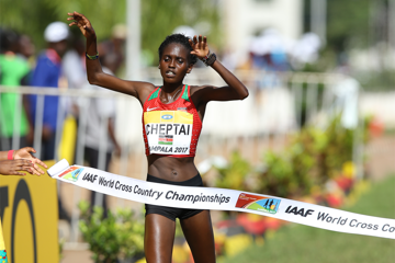 cheptai-kenya-top-six-sweep-world-cross-count