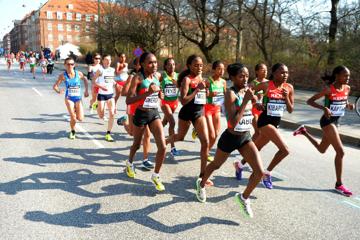 world-half-marathon-valencia-2018-entries