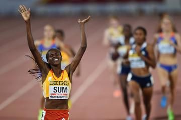 report-womens-800m-iaaf-continental-cup-2014
