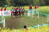 prize-money-iaaf-world-cross-country-champion