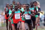 former-world-champion-chebet-back-to-form-in