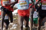eritrean-team-2015-world-cross-country