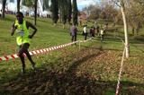alcobendas-roeselare-cross-country-toroitich