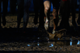 how-to-watch-world-cross-country-championship