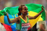 ethiopia-expects-defar-delivers