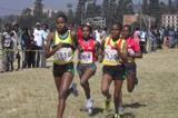tadesse-and-assefa-take-ethiopian-clubs-xc-ti